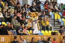 V Lounech se hrál zápas nejvyšší ženské basketbalové soutěže. Diváci si událost náležitě užívali.
