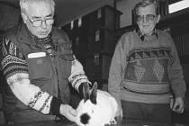 Jak jsme žili na Lounsku a Žatecku: Výstava králíků ve Vroutku