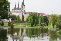 Lounskou lokalitu V Benátkách zalila během červnových povodní spodní voda. Většina dřevin dlouhé zatopení nevydržela