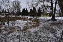 Malý rybník v Lubenci čeká revitalizace.