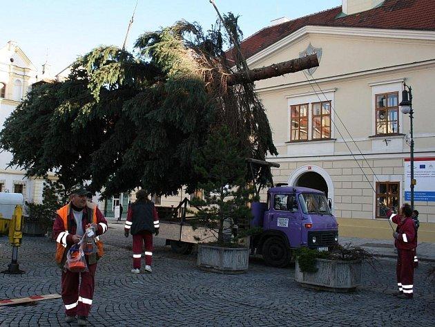 Stavba vánočního stromu v Lounech.