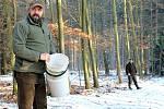 Myslivci Václav Šedivý (vpředu) a Martin Keil přikrmují zvěř v lese u Markvarce.