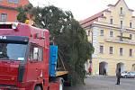 Stavění vánočního stromu v Žatci.