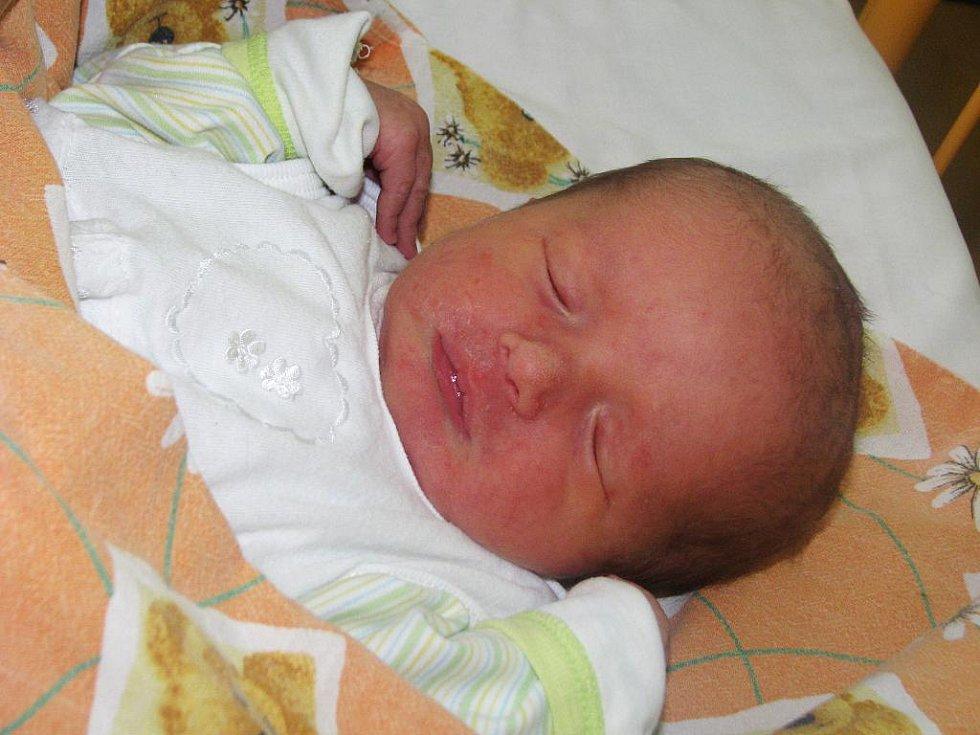 Štěpán Fric se narodil 9. srpna 2011 v 9:28 hodin v žatecké porodnici mamince Mileně Fricové z Ročova. Vážil 3,38 kilogramu.
