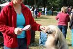 III. Krajská výstava psů na výstavišti v Lounech