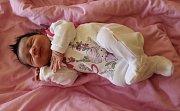 Laura Hedervaryová se narodila 15. ledna 2019 ve 13.17 hodin rodičům Tereze Lackové a Milanu Hedervarymu ze Zeměch. Vážila 3200 g a měřila 49 cm.