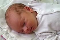 Filip Horecký se narodil 8. února 2018 v 15.45 hodin mamince Nikol Posledníkové z Loun. Vážil 3150 g a měřil 51 cm.