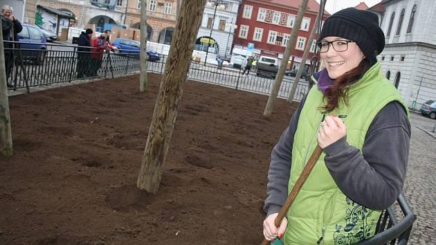 Lucie Štefanová s hráběmi upravuje hlínu ve chmelničce po včerejší výsadbě sazenic chmele.