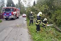 Žatečtí hasiči likvidují padlý strom v ulici Libočanská cesta