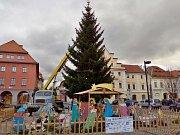 Instalování nového vánočního stromu na náměstí Svobody v Žatci v pondělí 12. prosince. Ten původní zlomil silný poryv větru