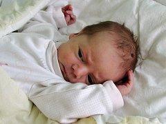 Laura Jankovičová se narodila 2. října  2017 ve 2.48 hodin mamince Haně Zahustelové ze Žatce. Vážila 3130 g a měřila 50 cm.
