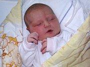 Sára Malá se narodila mamince Radce Jedličkové ze Žatce 7. února 2017 v 19.17 hodin. Vážila 4230 g a měřila 53 cm.