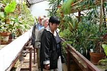 Návštěvníci psychiatrické léčebny si prohlížejí rostliny ve skleníku.