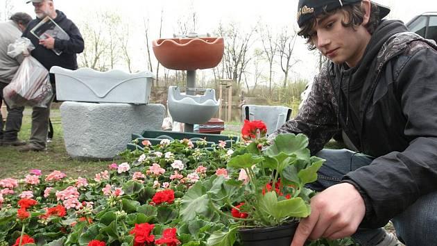 Prodejce Matěj Štěpán upravuje květiny při zahájení výstavy Dům a zahrada 2010 v Lounech