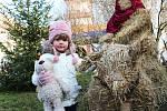 ADVENTNÍ SETKÁNÍ NA ZÁMKU. Advent na zámku Nový Hrad v Jimlíně opět lákal návštěvníky z širokého okolí.