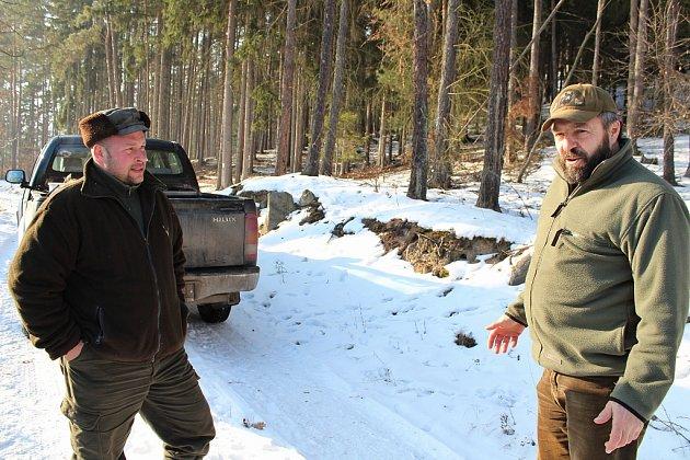 Myslivci Václav Šedivý (vpravo) a Martin Keil při práci vkrmelci vlese uMarkvarce.