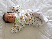 Anna Filová se narodila 29. března 2017 ve 3.07 hodin rodičům Eleně Filové a Robinu Filovi z Loun. Vážila 3,25 kg, měřila 50 cm.