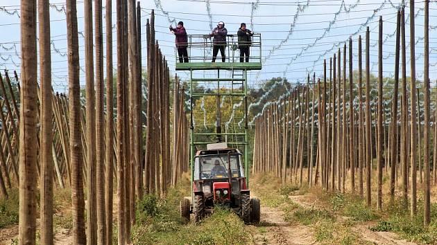 V Lišanech u Žatce v těchto dnech pracovníci s traktorem a plošinou čistí konstrukce od úvazků