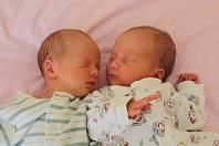 Jana Holubková (31. května ve 21.06 hodin, 2,06 kg, 42 cm) a Alena Holubková (31. května ve 21.05 hodin, 2,43 kg, 44 cm) se narodily mamince Janě Pilařové ze Žatce.