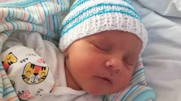 Jindříšek Ibl se narodil 27. 2. 2020 ve 13:40 hodin v Chomutovské nemocnici mamince Daně Iblové a Jindřichovi Iblovi. Po porodu vážil 3160 g a měřil 47 cm.