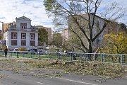 Velký strom spadl také v Lounech u mostu Veslařů.