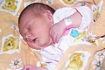 Mamince Haně Grossmannové ze Staňkovic se 9. prosince 2013 v 1.53 hodin narodila dcera Šárka Grossmannová. Váha 3840 g, míra 51 cm.