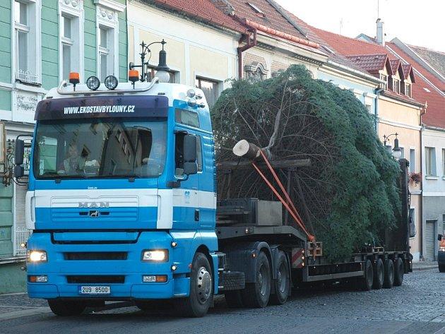 Auto přiváží mohutný smrk na lounské náměstí před loňským vztyčováním . Letos se strom rozsvítí příští neděli a za vylepšení vánoční výzdoby město zaplatí 200 tisíc korun.