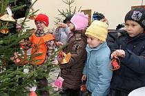 Děti z mateřské školy V Domcích zdobily vánoční stromky v Lounech