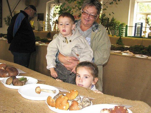 Marie Řehulková si s vnoučaty Bárou a Honzíkem Karasovými prohlíží houby na výstavě v chovatelském areálu v ulici Volyňských Čechů v Žatci.