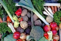 """Projekt """"bedýnek"""" nabízí čerstvou zeleninu a ovoce"""