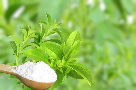 Stévie se užívá ve formě prášku, rozpustných tablet i kapek.