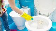 Jak vyčistit zanesený záchod