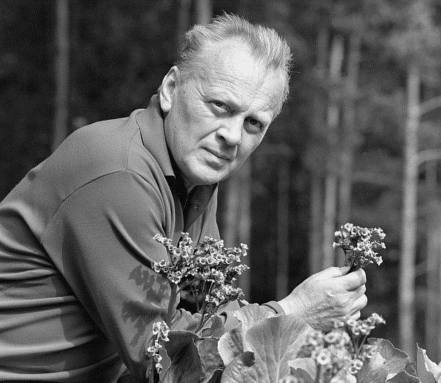 Karel Höger, český herec