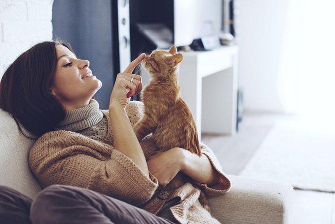 Domácí mazlíčci jsou častým důvodem k hádkám.