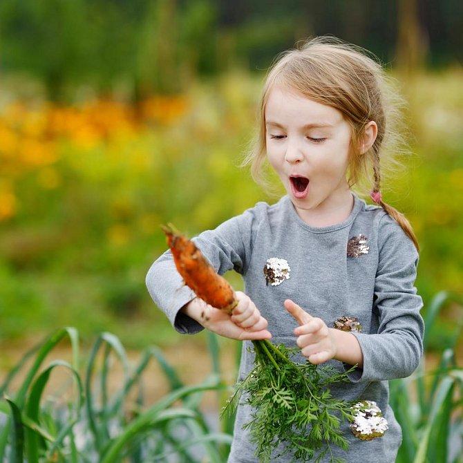 Magda pomáhá babičce a dědovi na zahrádce, zná latinské názvy veškerých plodin, které prarodiče pěstují.