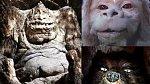 Kamenožrouta, létacího psa Falkora a příšeru G'mork daboval jeden herec