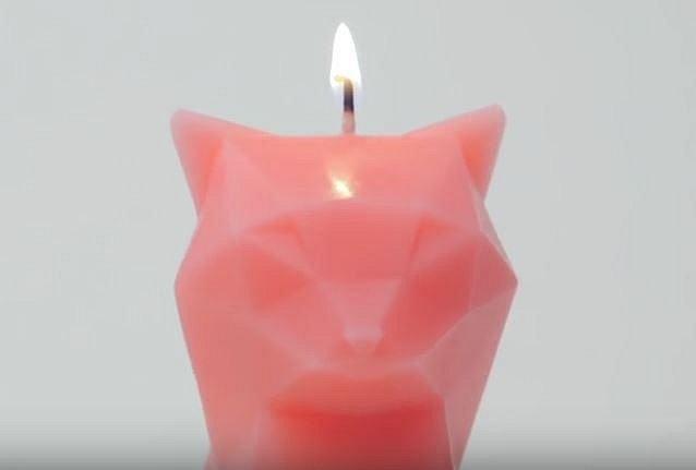 Kočičí svíčka – islandská designérka vymyslela něco hodně bizardního – svíčku ve tvaru kočky, která když celá vyhoří, odhalí, že má v sobě ukrytou kovovou kostru kočky