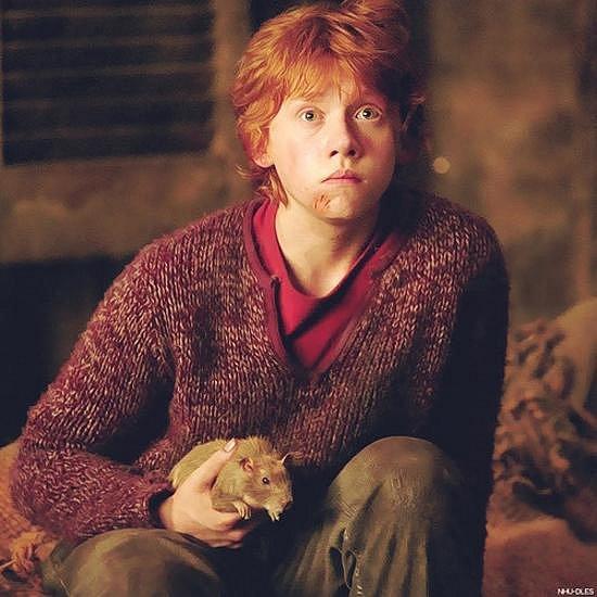 Harry Potter a vězeň z Azkabanu - Rupert Grint coby Ron Weasley