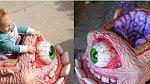Odrážedlo - růžový mozek