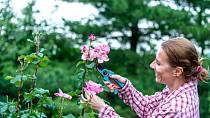Péče o květiny zabere spoustu času.