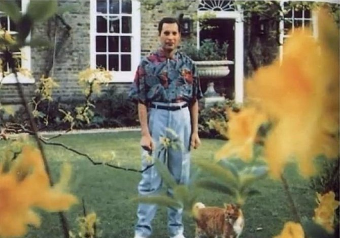 Freddie Mercury (+ 24. listopadu 1991)