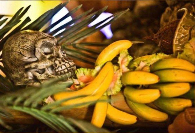 Ilustrační foto - kanibalismus