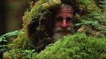 Živí se tím, co mu les dá, lesním ovocem, bylinkami.