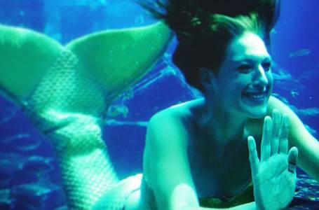 Povolání: mořská panna v akváriu