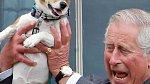 Princ Charles má radši koně než psy.