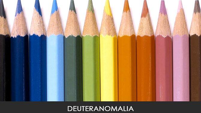 Takto jsou vidět barvy při deuteranomalii, částečné poruše vidění zelené barvy.