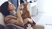 Kočky jsou milá stvoření a současně jedničky mezi vetřelci.