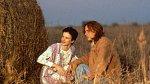V melodramatu Co žere Gilberta Grapea byla dokonalá.
