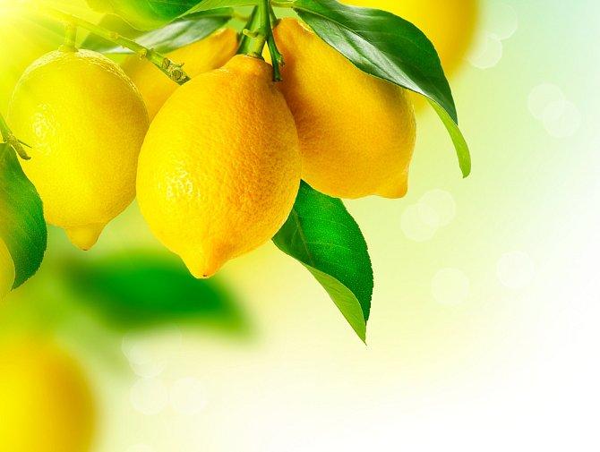 """Připravte si doma speciální čistič na """"zažranou"""" špínu. Stačí do uzavíratelné sklenice naskládat kusy citrónu včetně slupek a zalít bílým octem. Sklenici uzavřete a nechte dva týdny na tmavém místě, každý den s ní důkladně zatřeste. Po 14 dnech je hotovo!"""