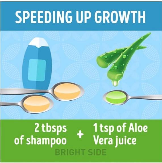 Chcete podpořit růst vlasů. Myjte si je směsí 2 lžic běžného šamponu a 1 lžičky džusu z aloe vera.